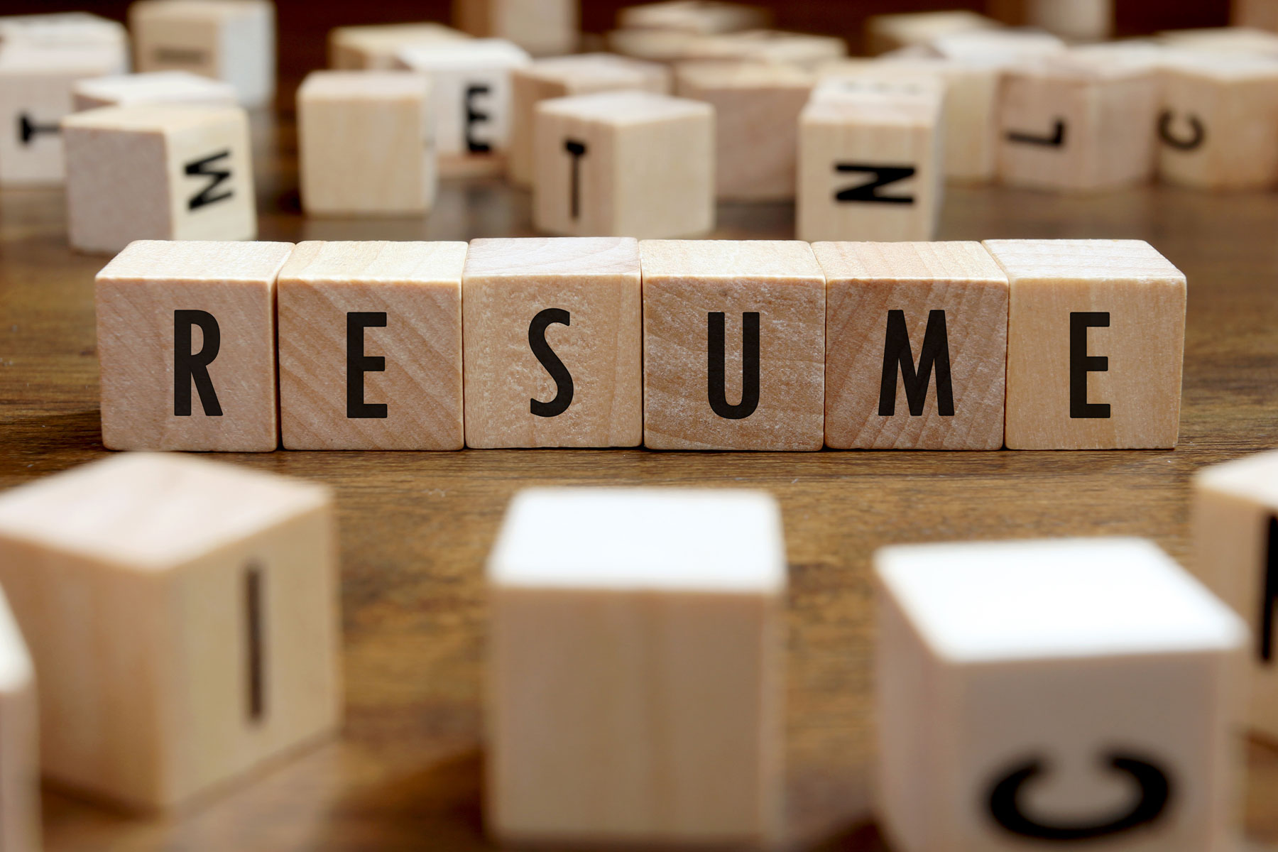 how to format and structure your resume with template wisdify